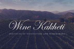 Wine Kakheti introductory Video
