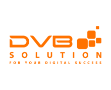 DVB Solution branding poligraphy