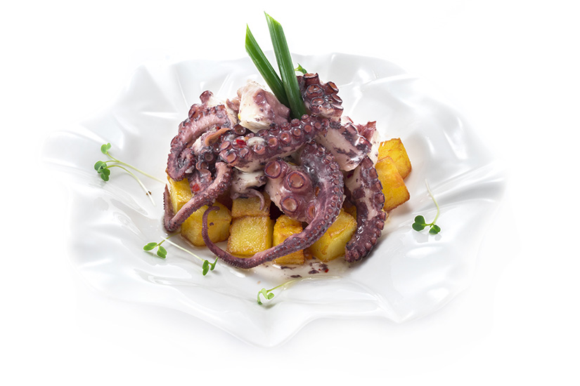 Fish and Wine Octopus
